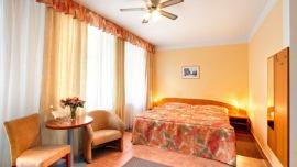 SEIFERT HOTEL Praha - Double room